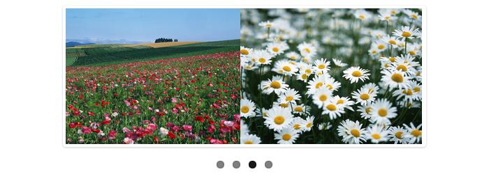 [JS]レスポンシブWEBデザイン対応のコンテンツスライダー「Flex Slider」
